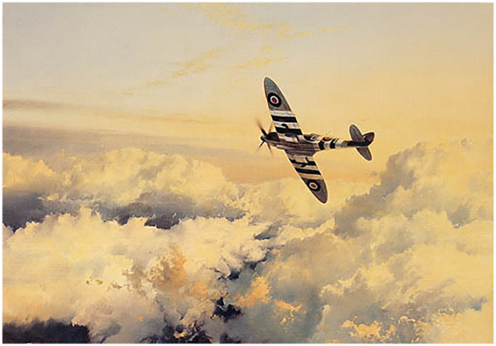 Wings of Glory by robert Taylor